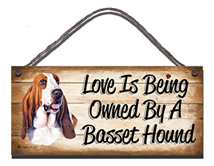 Best Gifts For Basset Hound Owners