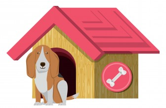 A Quick Guide in Choosing a Basset Hound Kennel